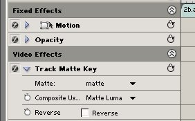 matte_practice_options.jpg