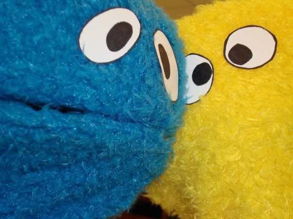 Blue and yellow furry monsters